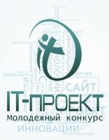 IT проект 2013 год