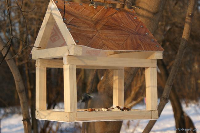 Как сделать кормушку для птиц своими руками ютуб